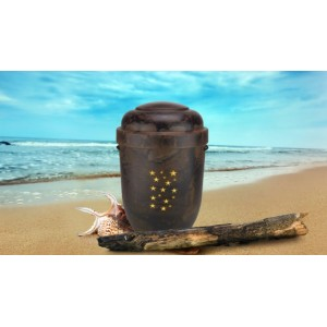 Biodegradable Cremation Ashes Funeral Urn / Casket - NATURAL WOOD EFFECT with STAR LEGACY