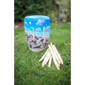 Biodegradable Cremation Ashes Funeral Urn / Casket – GO ORGANIC (Asparagus)