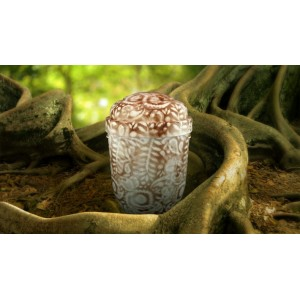 Biodegradable Cremation Ashes Funeral Urn / Casket - CHESTNUT BROWN & WHITE
